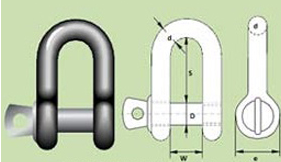 D-Shackle Screw Pin Type